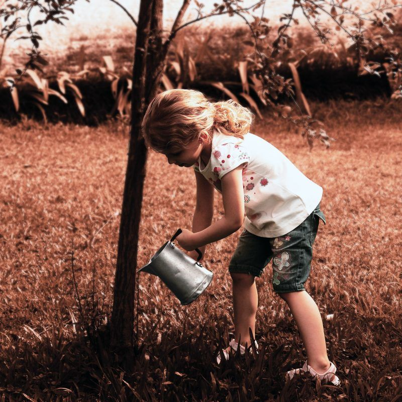 Child watering tree.